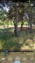 Участок в лесу площадью 22 сотки в Николаеве