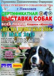 Сертификатная выставка собак всех пород!
