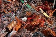 Металлолом и отходы цветных металлов куплю в любых количествах, постоян