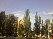 Квартира на улице Бузника