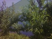 Дом в Ракетной Роще