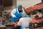 Оператор оборудования (готовые мясные изделия/котлеты для гамбургеров)