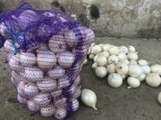Продаем белый лук