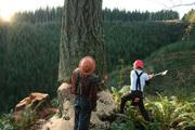 Специалист по обрезке леса в Финляндию