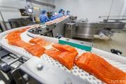 Вакансія на рибну компанію