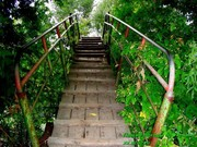 Зелёный туризм в Украине пешие туры Украина.