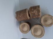 Реализуем брикеты из деревьев хвойных пород